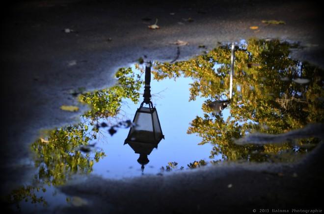 avenue du lac 9.2013 © frédéric peetroons