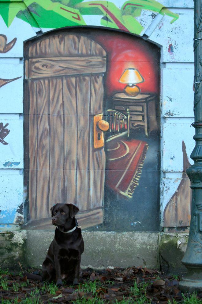 graffitis du lac (détail) © andré riche