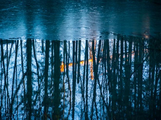 220 etang gillet 2.2016 2 © cedric muscat1