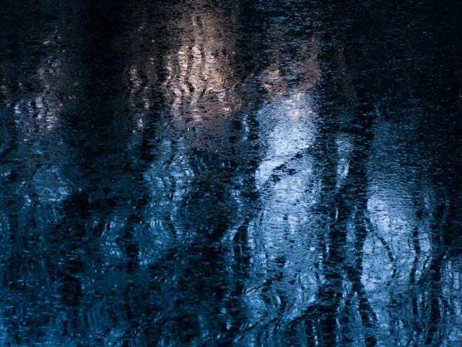 Etang Gillet 2.2014 © Cedric Muscat - 1