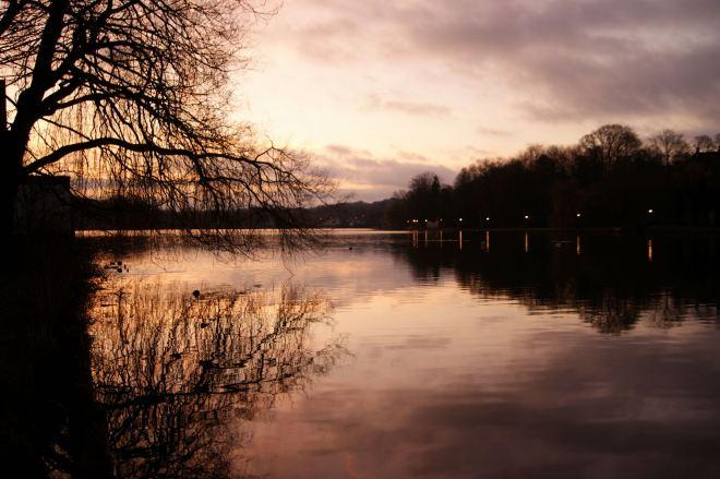 Lac de Genval 2.2014 © Monique D'haeyere - 8