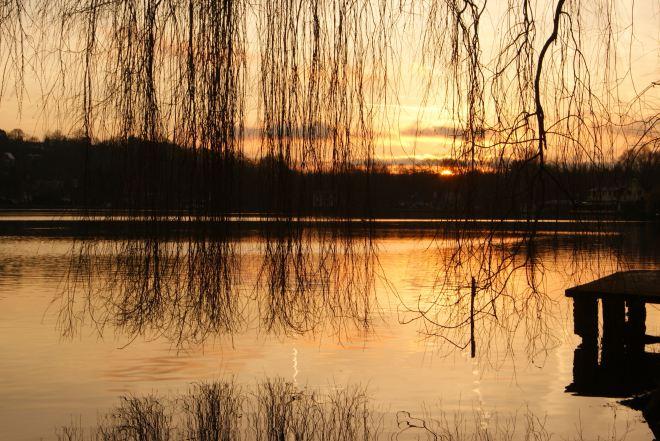 Lac de Genval 2.2014 © Monique D'haeyere - 9
