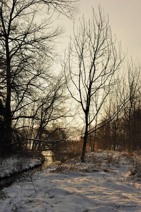 vallée de la lasne (carpu) 1.2013 © patrick vandendael-007