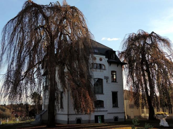Villa Beau-Site 11.2014 B © Christian Petit - 4