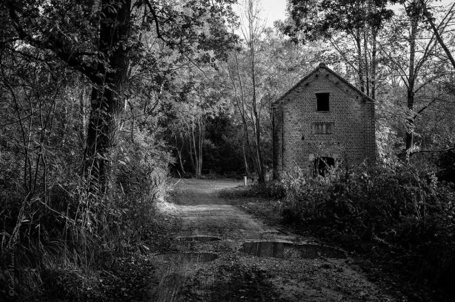 rue du vieux moulin à rosières 10.2012 © cedric muscat