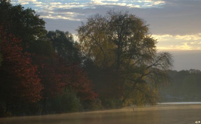 Lac de Genval 11.2014 © Gilbert Nauwelaers - 3