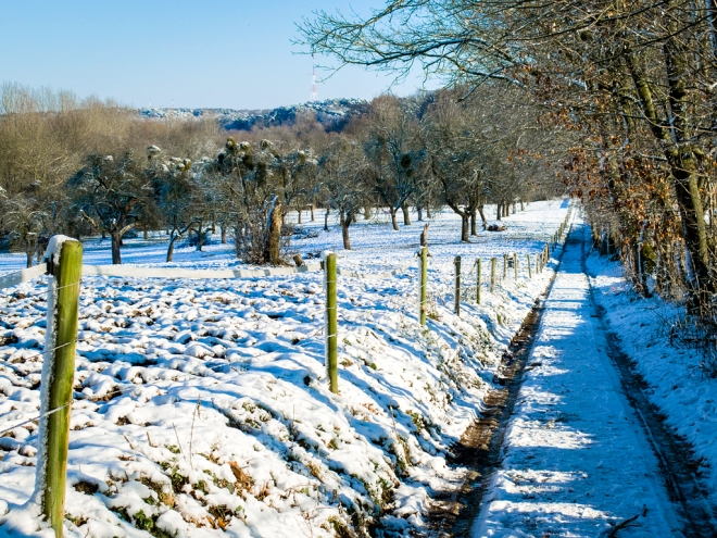 Le Plagniau Rosières (neige) 12.2014 © Cedric Muscat - 1
