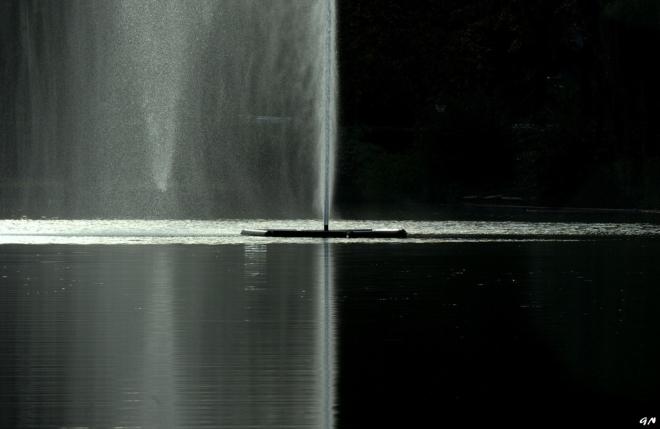 Lac de Genval 10.2014 B © Gilbert Nauwelaers - 5