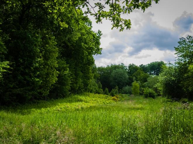 622 prairie du carpu 6.2015 © cedric muscat