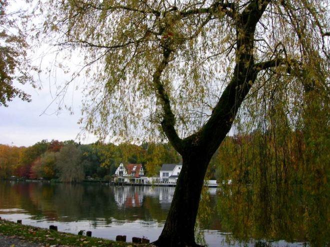 1106 lac de genval © alexandre de vuyst 19