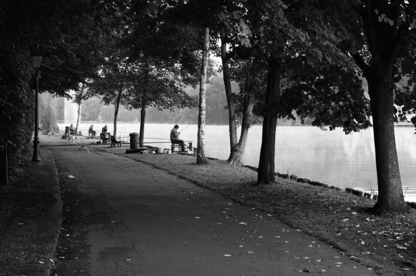 Promenade Paul Harris