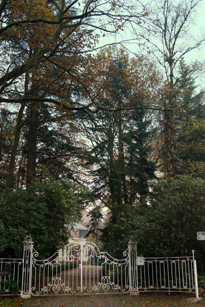 Château vert avenue Boulogne Billancourt 11.2014 © Monique D'haeyere - 2