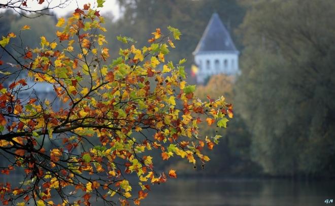 Château du Lac Genval 11.2014 © Gilbert Nauwelaers - 4