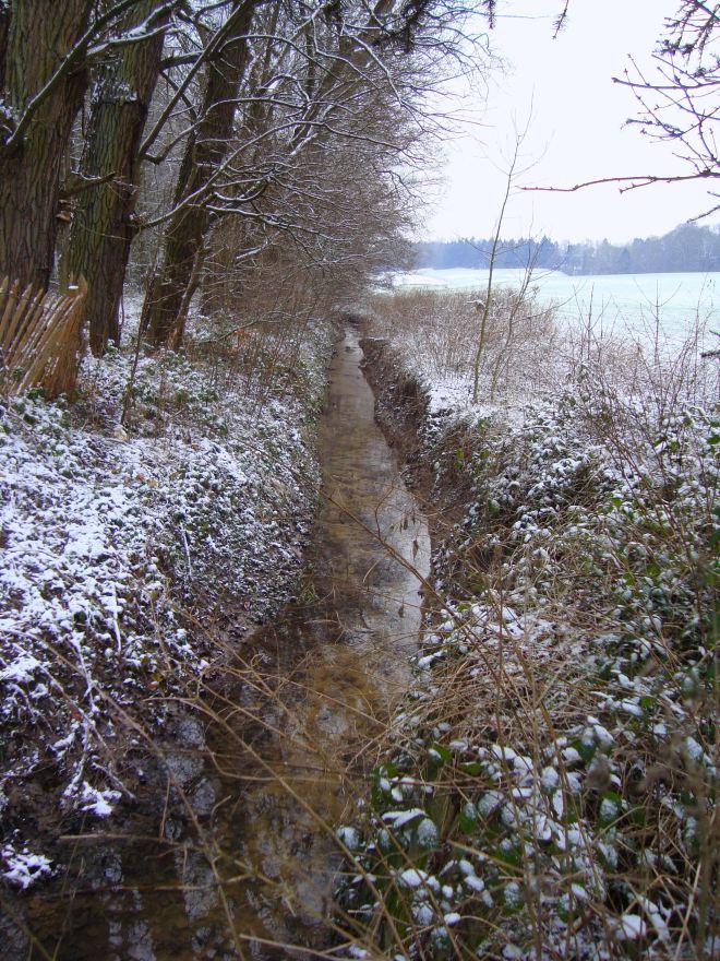 ruisseau du château 1.2013 © christine blavier