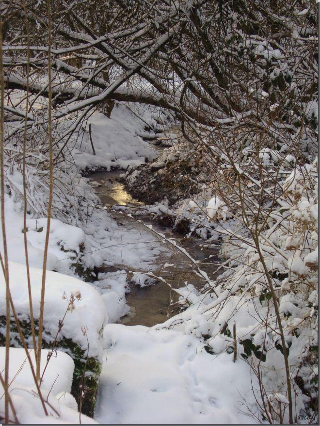 ruisseau du château 1.2013 b © christine blavier
