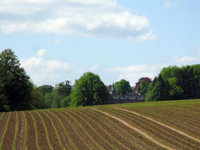 château de rixensart 6.2012 © cedric muscat