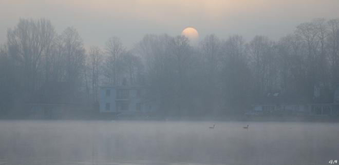 Lac de Genval 3.2014 © Gilbert Nauwelaers - 5