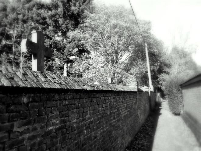 1101 sentier du cimetière rixensart 11.2012 © ges terzo