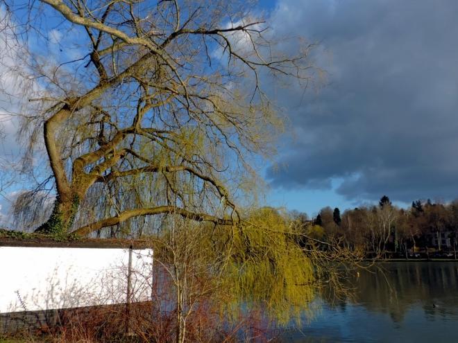 Lac de Genval 4.2015 © Christian Petit - 4