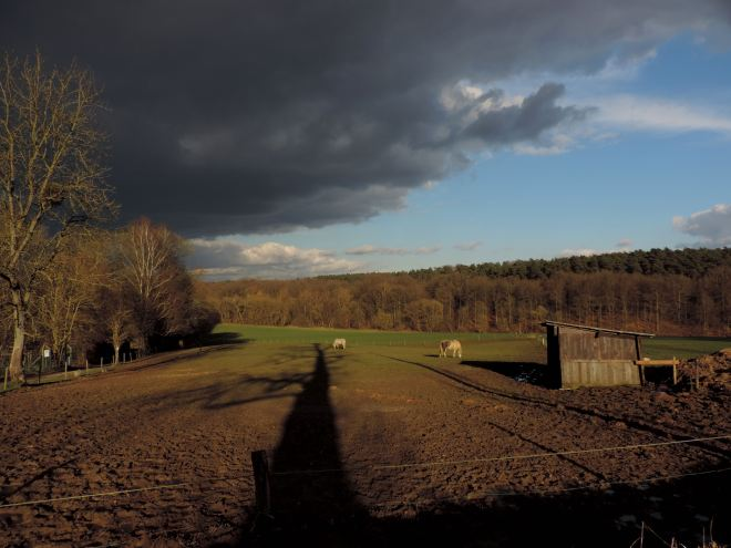502 chemin du plagniau rixensart 4.2015 © christian petit