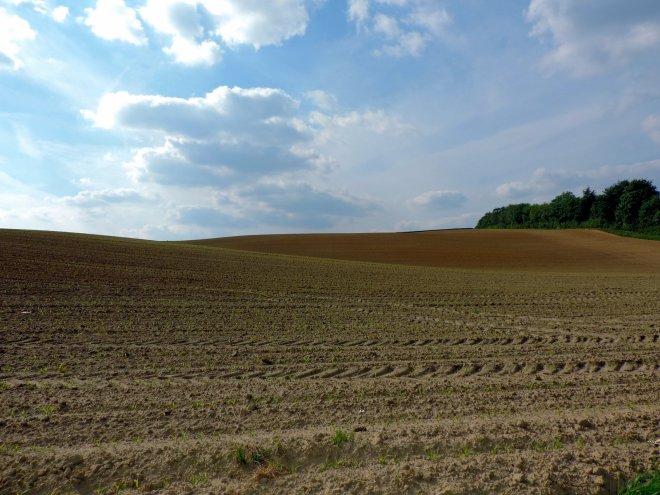 619 la verte voie 6.2015 © christian petit 1