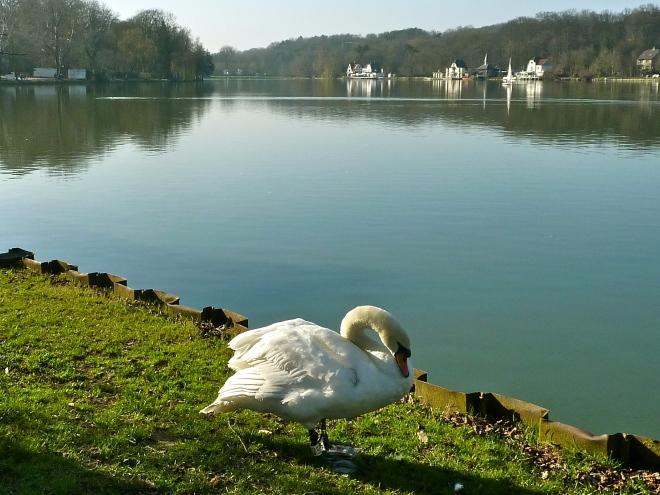 lac de genval 4.2012 © ges terzo