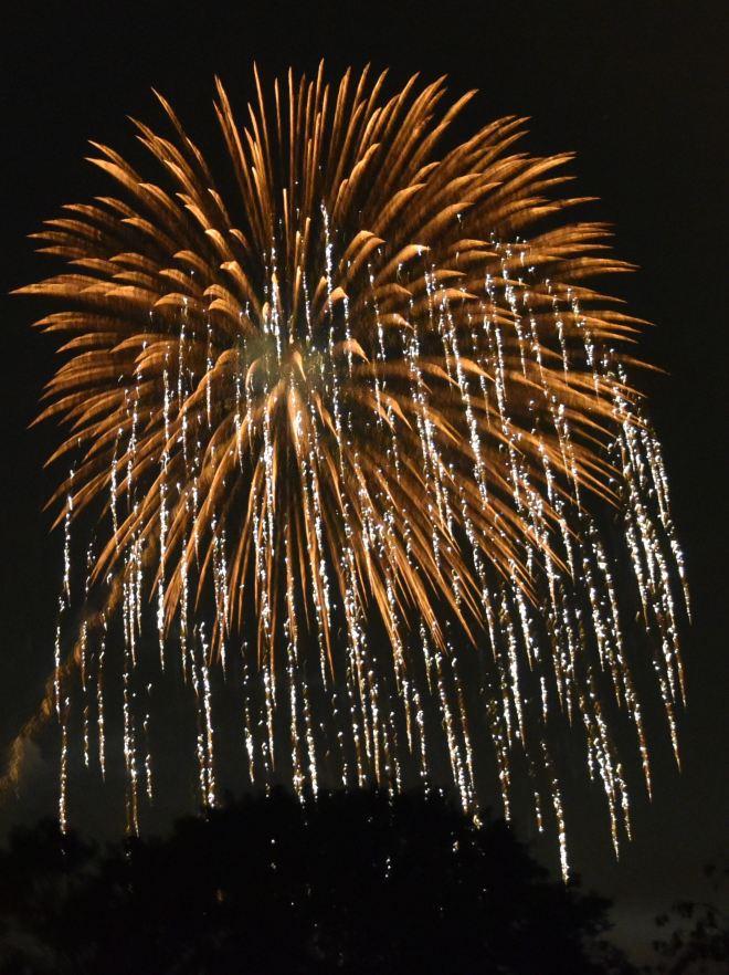 927 feu d'artifice de la hulpe vu de l'avenue de la faisanderie à genval © bernard defer 3