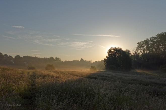 702 lever de soleil carpu 6.2016 © patrick vandendael1