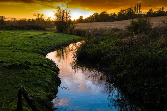 la lasne (carpu) 11.2013 © cedric muscat.inondées