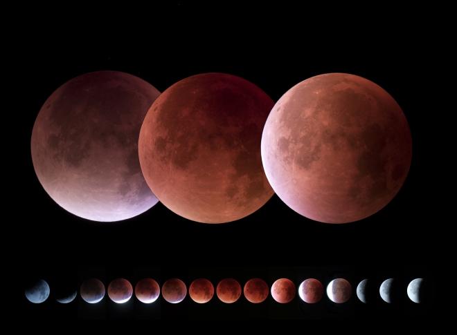 1003 avenue roger de grimberghe eclipse de lune 28.9.2015 © philippe van den doorn
