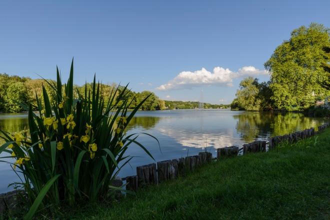 Lac de Genval 5.2014 © Christian De Ceuninck - 1