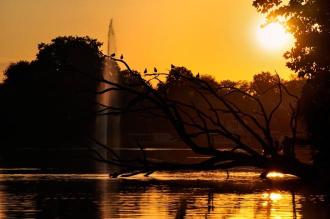 lac de genval 9.2011 © christian de ceuninck