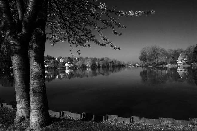410 Lac de Genval 4.2017 © Eric de Séjournet23