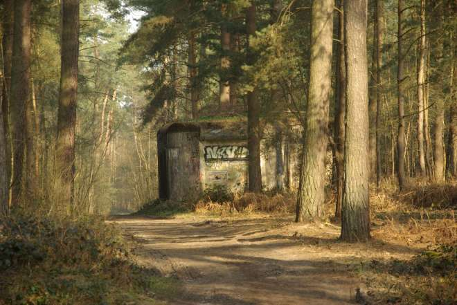 Bunker III Bois de Rixensart © Eric de Séjournet (1)