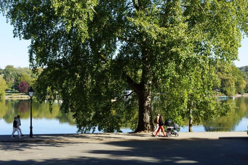 Avenue du Lac