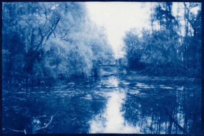Drève du Val Fleuri Camera obscura imprimé en Cyanotype sur papier Washi 5.2019 © Cedric Muscat
