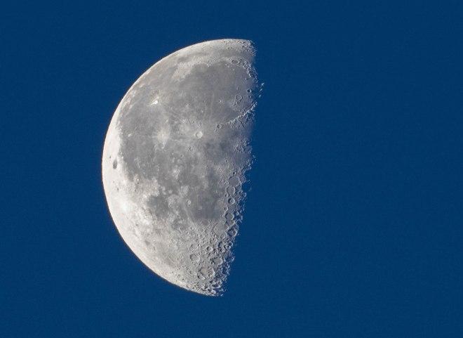 Lune bleue 11.2019 avenue de Merode Rixensart © Bruno Marchal